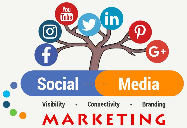 Social Media Marketing Company in Udaipur,